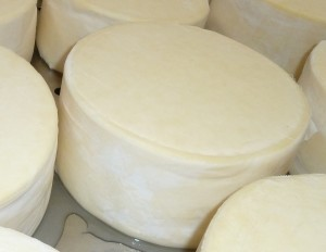 Bandaging Cheese - Preservation Of Cheese