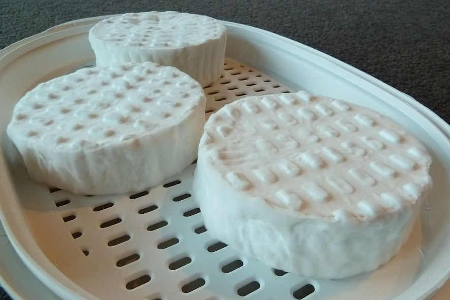 camembert mold, camembert cheese mold, camembert mould