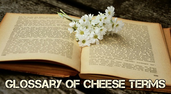 Glossary Of Cheese Terms Curd Nerd