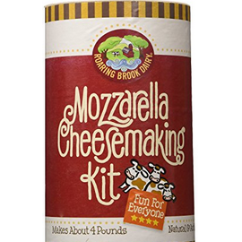 cheese making kits for home cheese making
