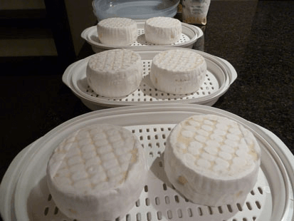 Camembert Cheese Drying Tray