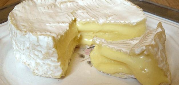 Camembert Cheese Recipe