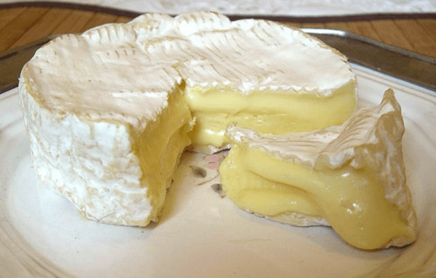 How To Make Camembert Cheese Recipe At Home