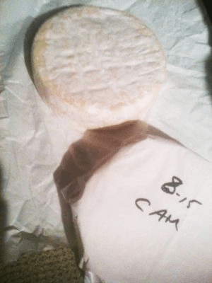 How To Store Camembert Cheese